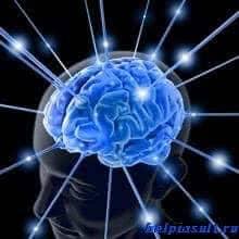 Нервная система. Мифы и реальность.