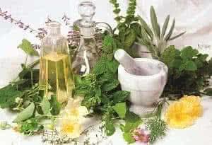 Лечебные травы для красоты и здоровья