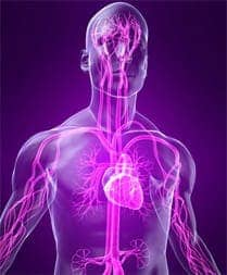 Риск инсульта при кардиоваскулярном синдроме