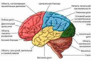 стволовой инсульт последствия лечение