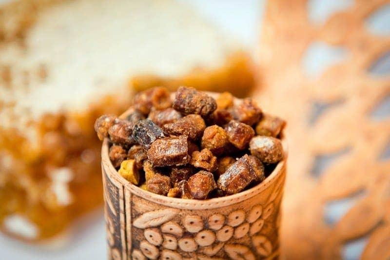 Перга пчелиная: полезные свойства, показания и противопоказания, как принимать