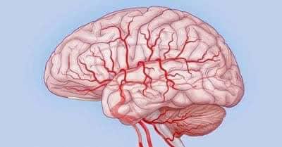препараты для мозгового кровообращения после инсульта