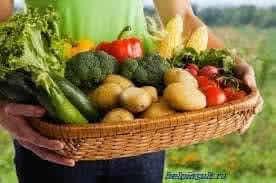 Основные правила диеты после холецистэктомии