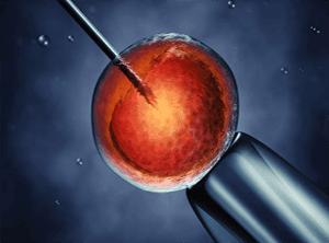 Стволовые клетки в лечении инсульта и травм мозга