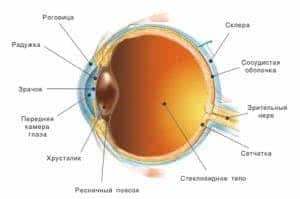 Лечение частичной атрофии зрительного нерва