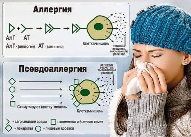 Аллергия и псевдоаллергия — как отличить?
